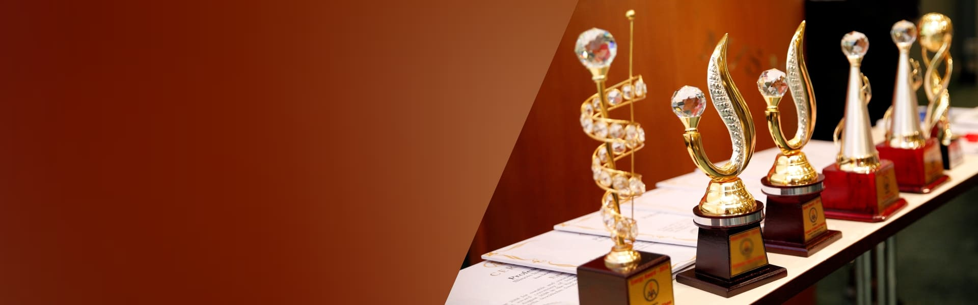 Recognizing Scientific Community Members With Awards to inspire Good Research