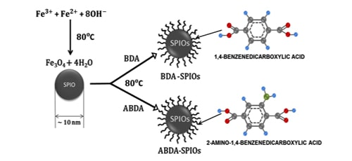 Easy-Synthesis of BDA/ABDA for Magnetic-Hyperthermia Application | IAAM